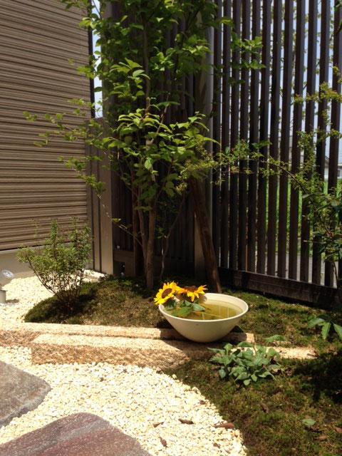 和室から坪庭を眺めて一杯